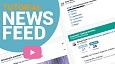 Factro News Feed
