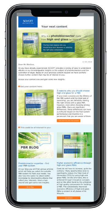 Lead Nurturing E-Mail Evalanche