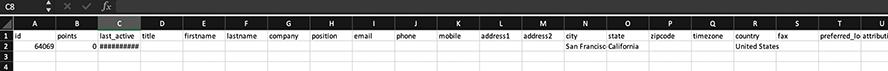Mautic Kontakte exportieren CSV-Datei