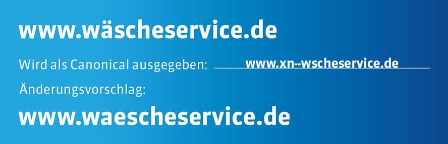 3Wascheservice-Grafik-Themenwelt-Webdesign3