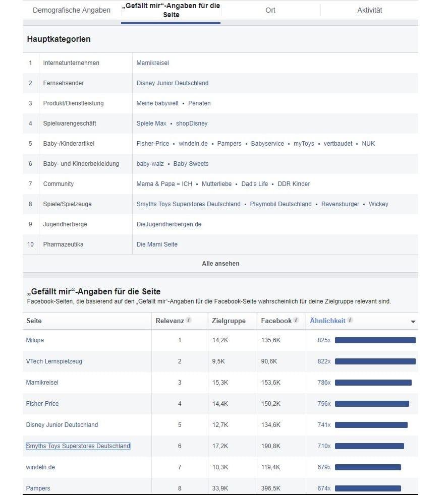 Hauptkategorien-Zielgruppeninsights-Beispiel