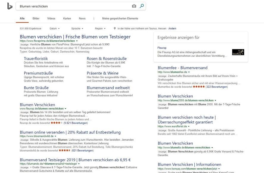 Screenshot Beispielsuche Search-Anzeigen Bing