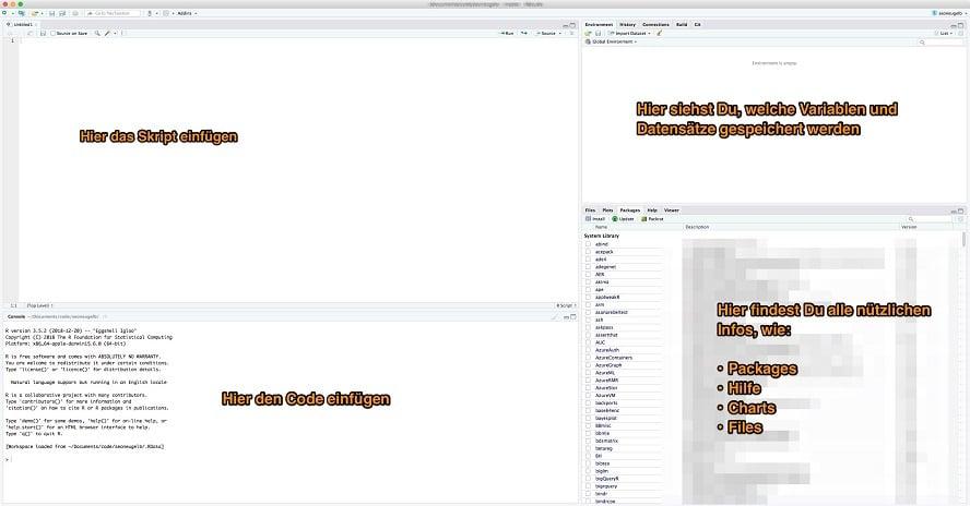 de_rstudio_blank_environment